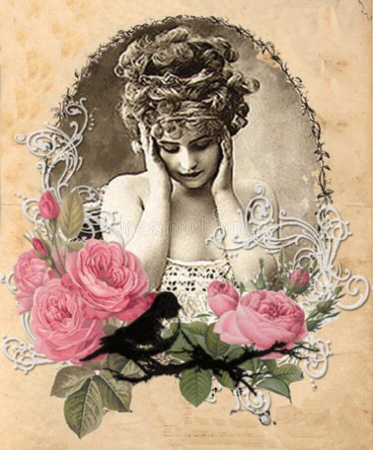 Evangeline Rose Cover 2 stock images