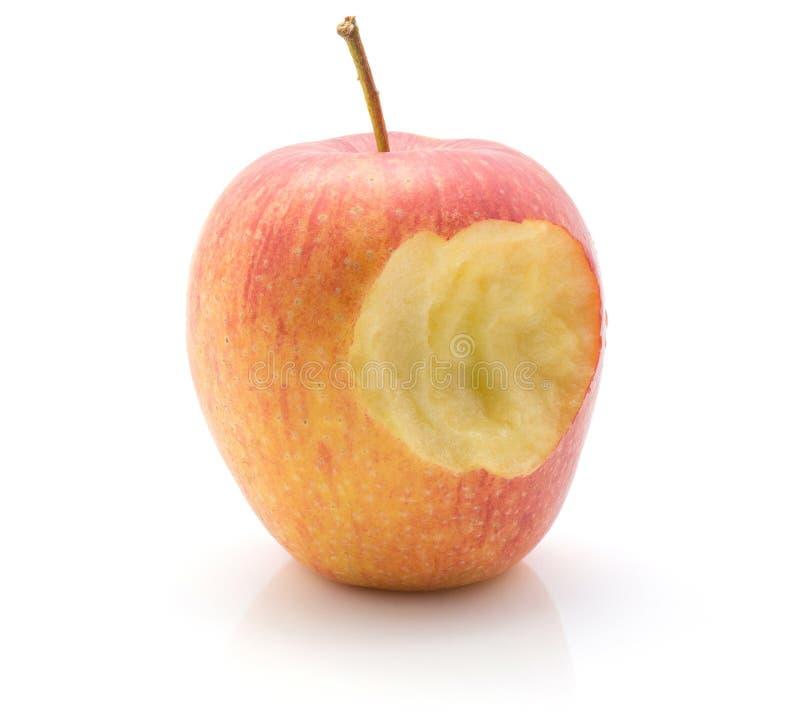 Evelina jabłko odizolowywający fotografia stock