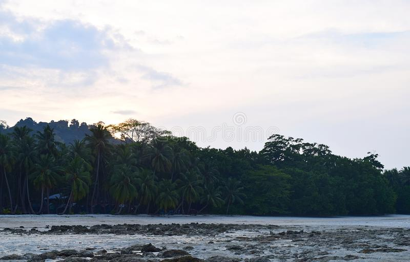 An Evening at Beach during Low Tide with Coconut Trees and Bright Sky - Vijaynagar Beach, Havelock Island, Andaman Islands, India stock photos