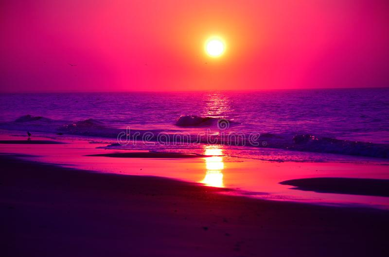 Evening beachfront view. Violet colors mesmerize and relax at sundown royalty free stock photos