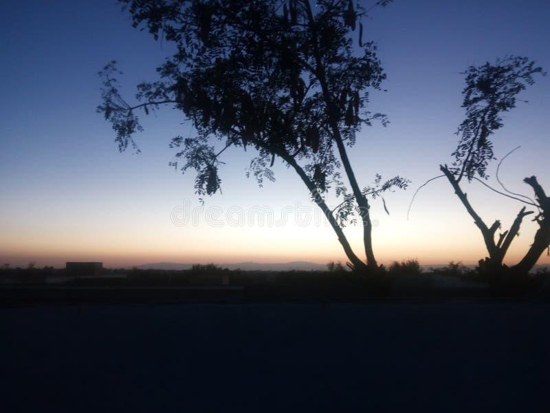 Evening cień zdjęcia stock