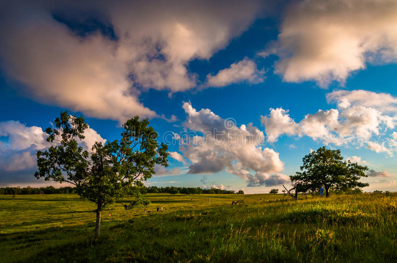 Evening Clouds Over Trees In Big Meadows, Shenandoah National Park Royalty Free Stock Images