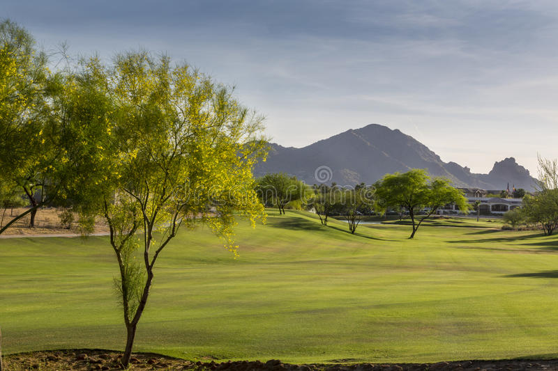 Evening falls over the Scottsdale Greenbelt Park and Camelback Mountain. Evening falling over the Scottsdale Greenbelt with grass and Palo Verde and Mesquite royalty free stock photography