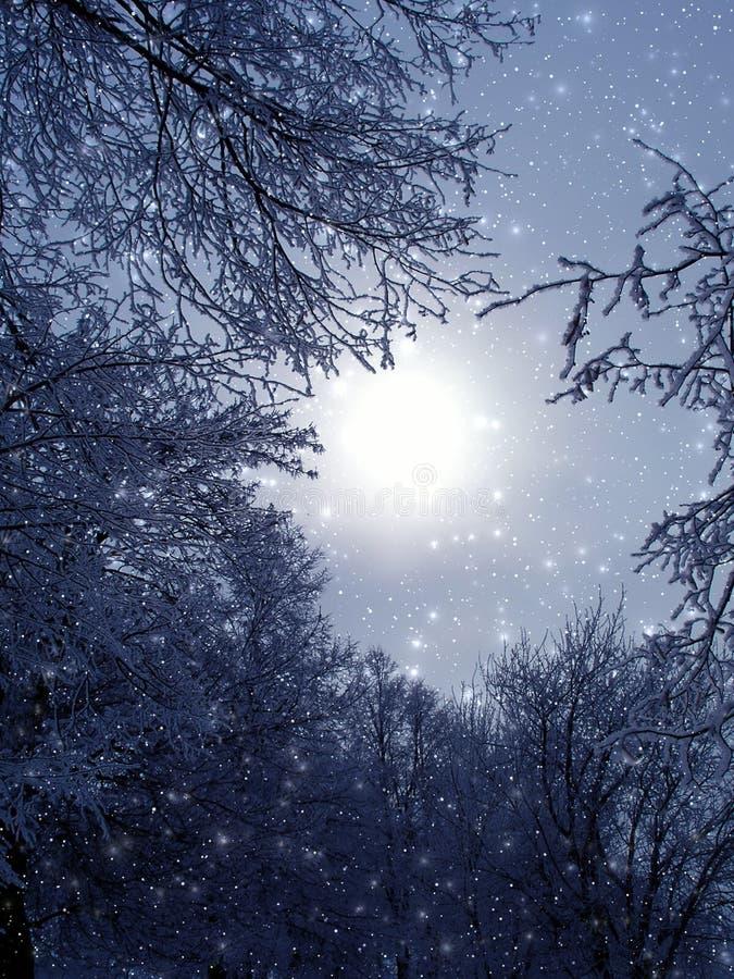 Evening fantastic light stock image