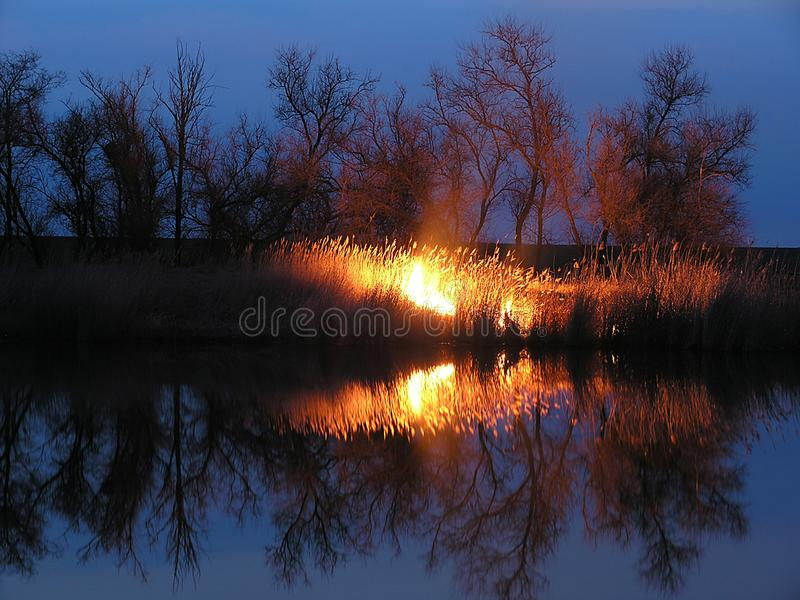 Evening fire near the river. stock image