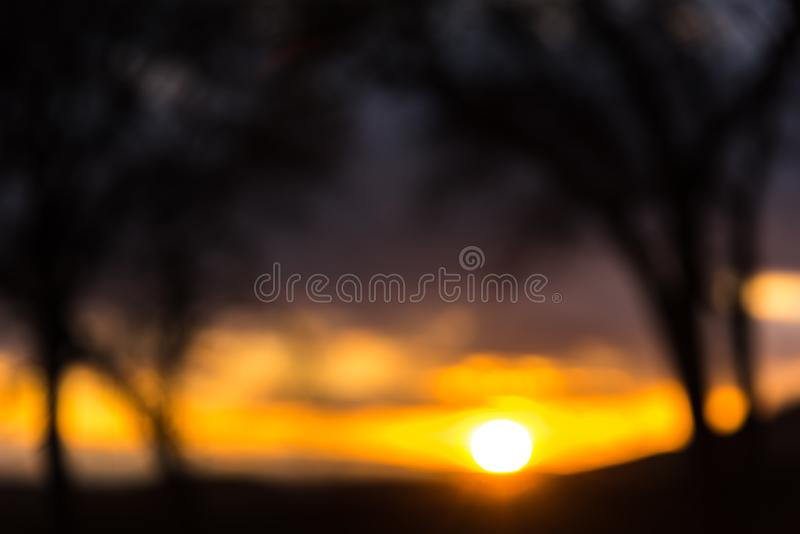 An evening at the forest with the sun in the view. An evening at the forest with the blurry look in the sun royalty free stock photography
