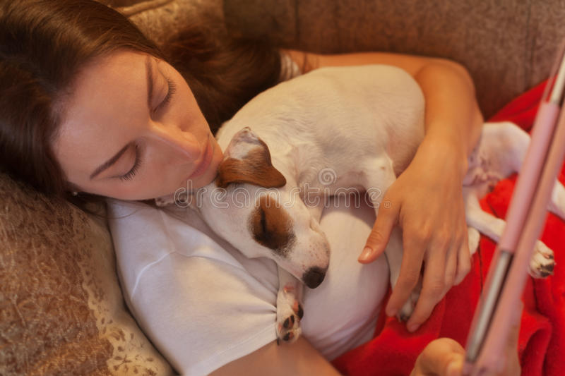 Evening with a friend. One lovely evening for a woman with a sleeping Jack Russell and tablet pc stock images