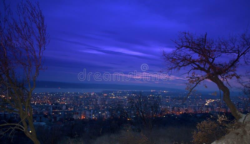 Evening głębokiego niebieskie niebo, drzewa i miasto noc zaświecają obrazy royalty free