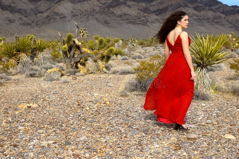 Download Evening Gown stock photo. Image of brunette, female, mountains - 3427298