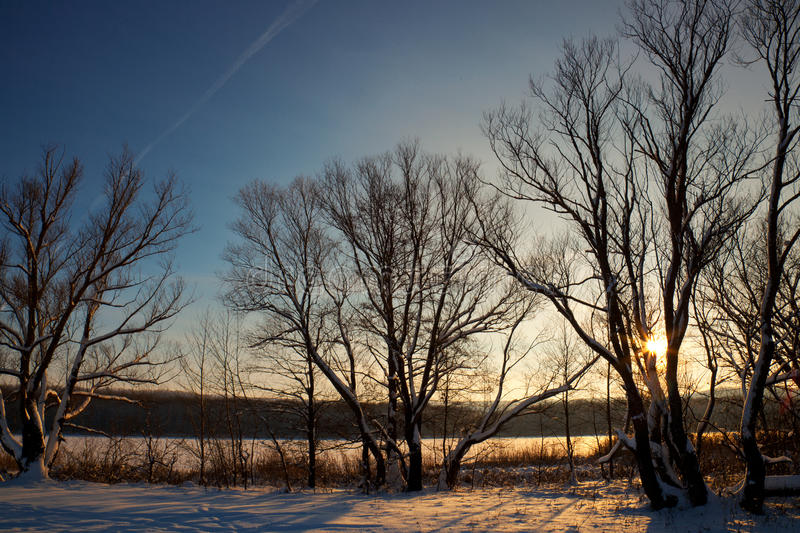 Download Evening At The Lake Royalty Free Stock Photos - Image: 19312878