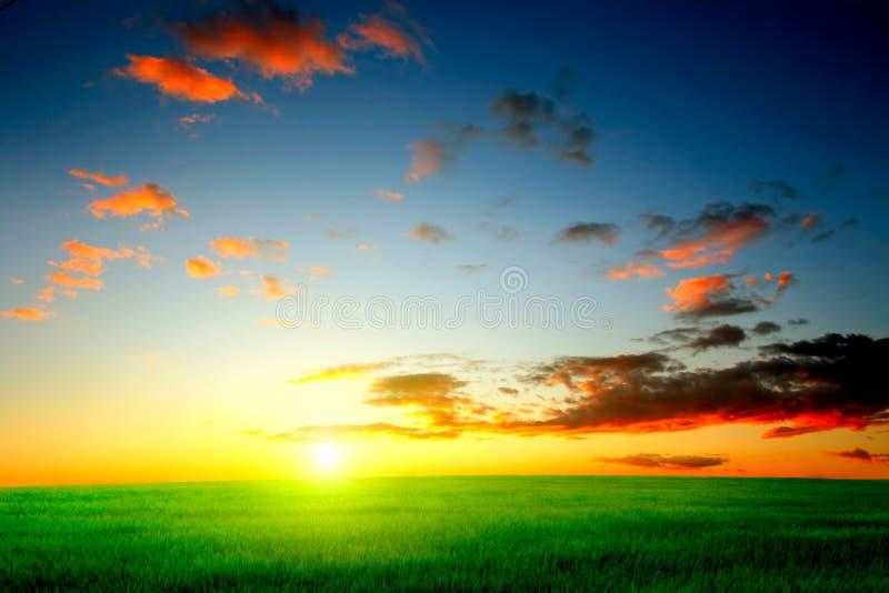 Evening landscape royalty free stock image