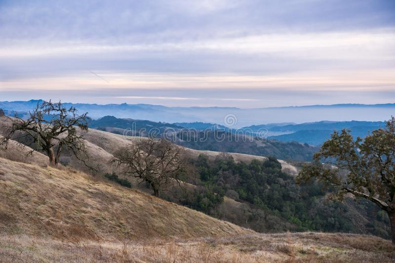 Evening landscape in Henry W. Coe State Park, south San Francisco bay, California royalty free stock images