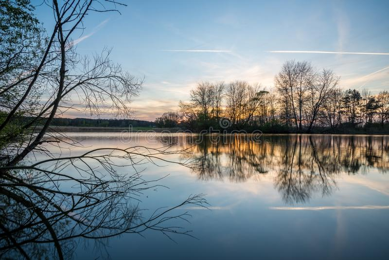 Evening landscape with several trees on side of small pond stock photos