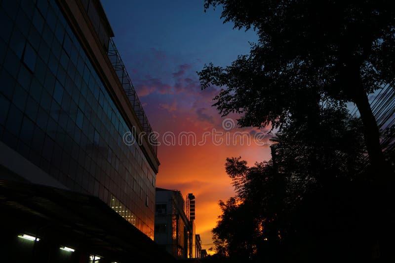 Evening light in big cities.  stock image