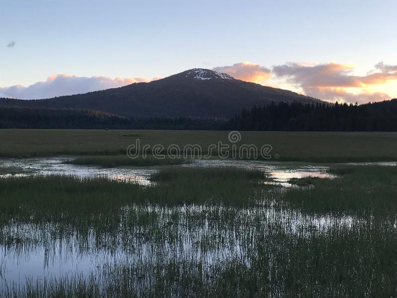 Evening Light, Mountain, Sky and Meadow royalty free stock image