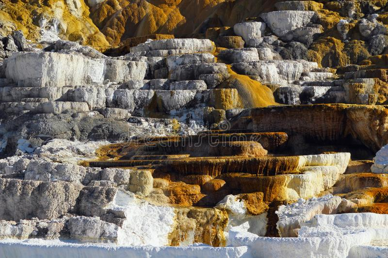 Mammoth Hot Springs, Yellowstone National Park, Wyoming, USA, Minerva Terrace Details in Golden Evening Light. Golden evening light shines on the details of the stock image