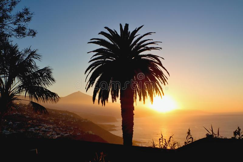 Evening mood in El Sauzal on the island of Tenerife with a view of Mount Teide and a large palm tree in the foreground. stock image