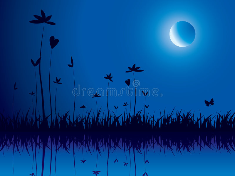 Download Evening nature stock vector. Image of meadow, environment - 9028497