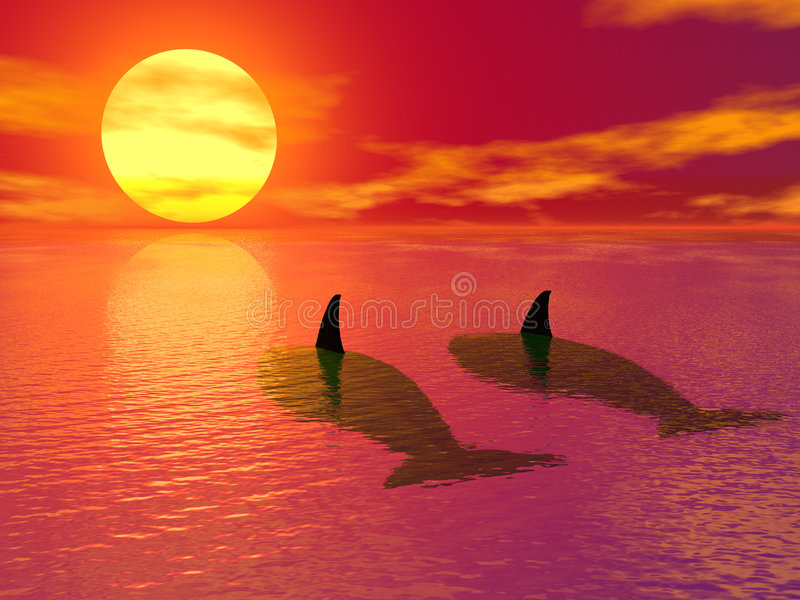 Evening in paradise vector illustration