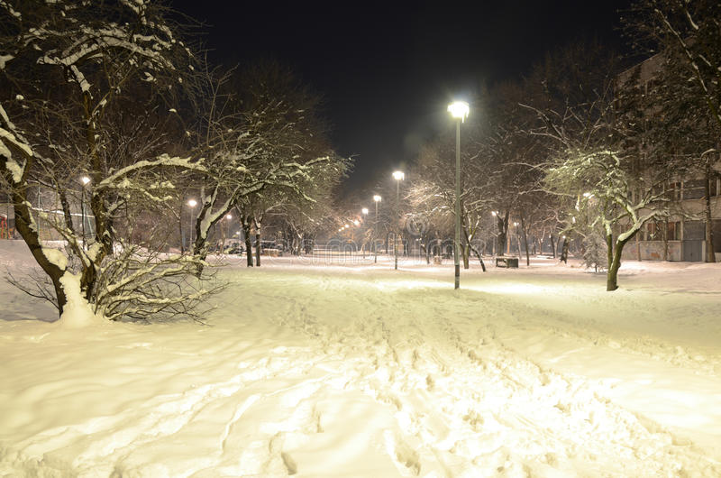 Evening in a Park. Night scene of a park alley with lampposts in winter time royalty free stock image