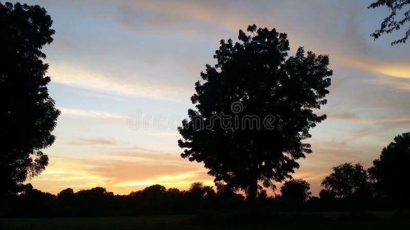 Evening photography stock image