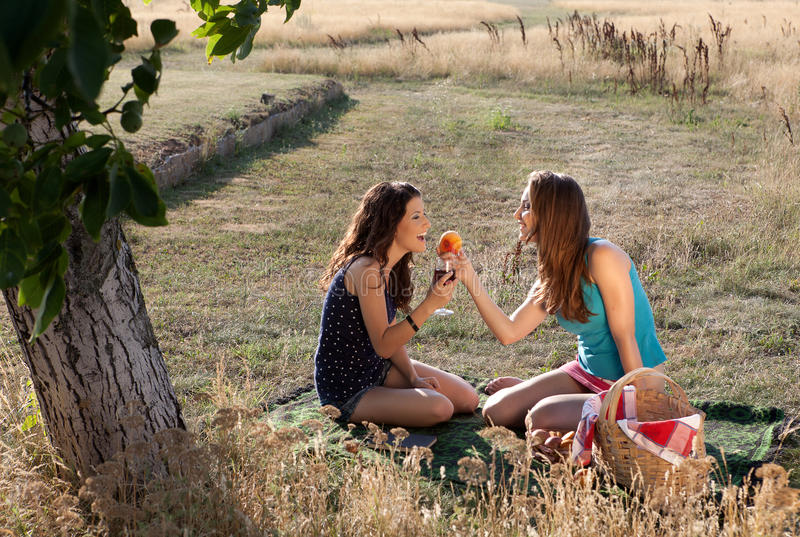 Download Evening picnic stock image. Image of light, evening, friendship - 22475381