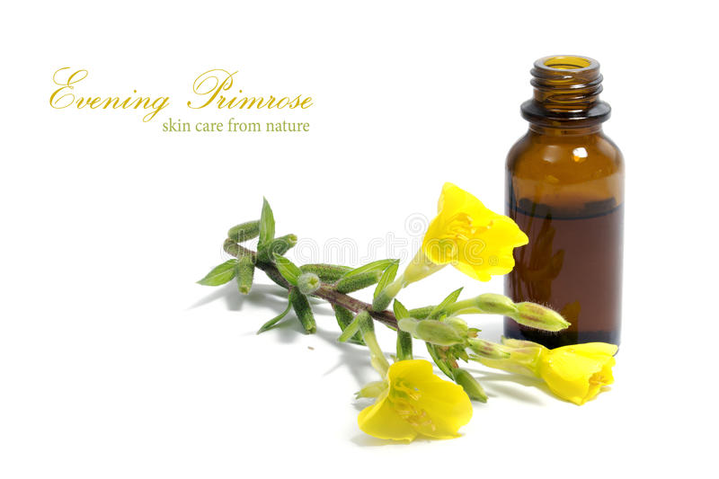 Evening primrose oil, flowers and a bottle, isolated on white stock photos