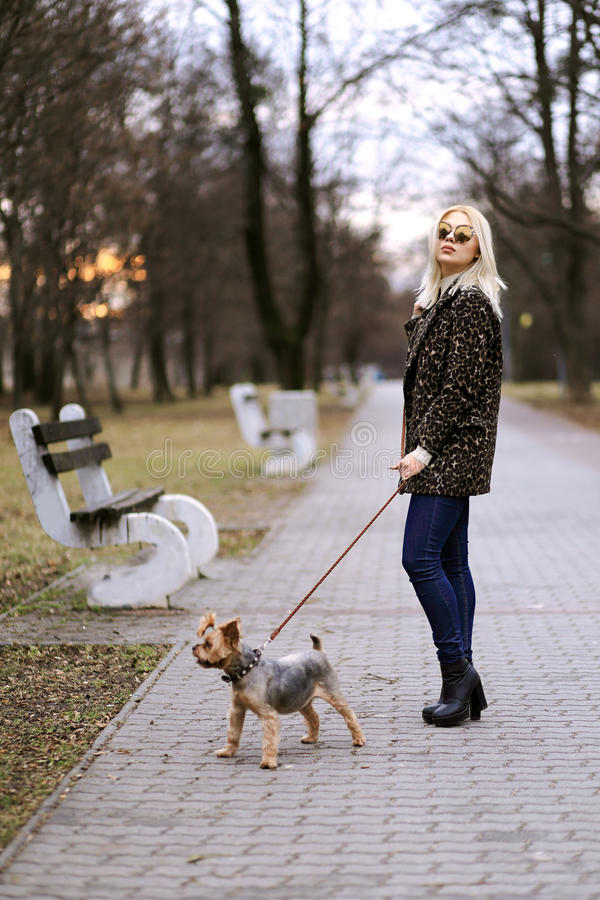 Evening promenade. Fashionable young blond woman with little dog on the promenade in the evening stock image