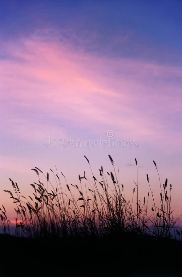 Evening red sky stock photo