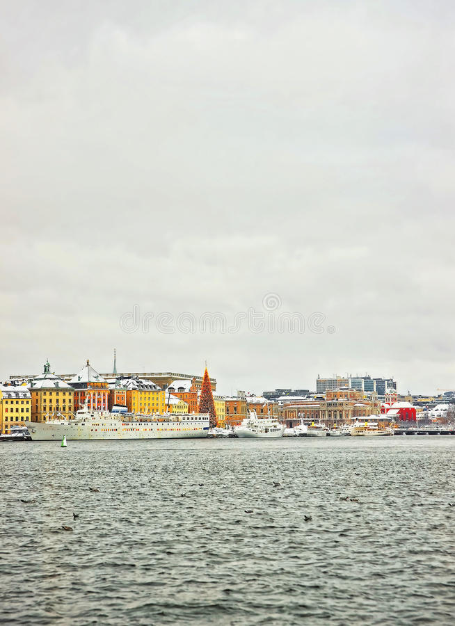 Evening scenery of the Old City of Stockholm with a Christmas tr. Ee in Sweden in winter royalty free stock images
