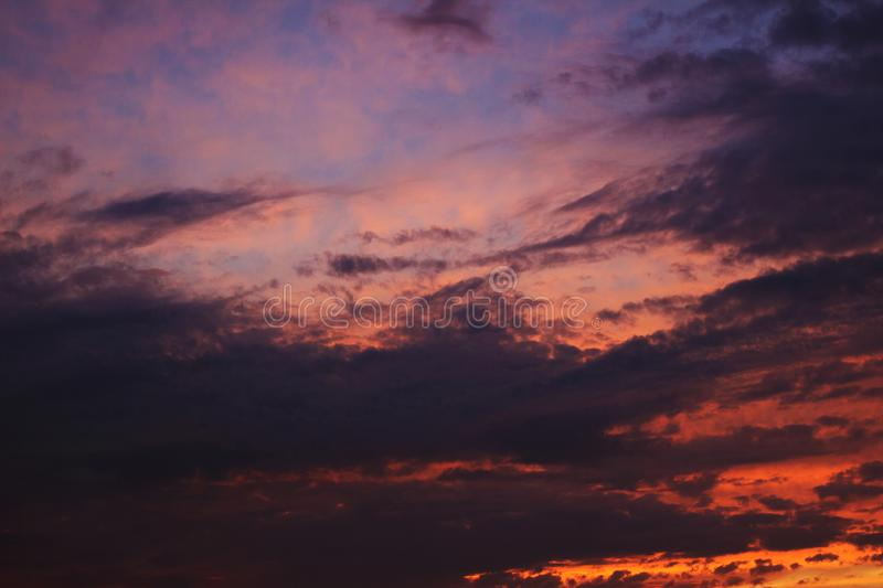 Evening sky. Bright pink sky with clouds royalty free stock photography