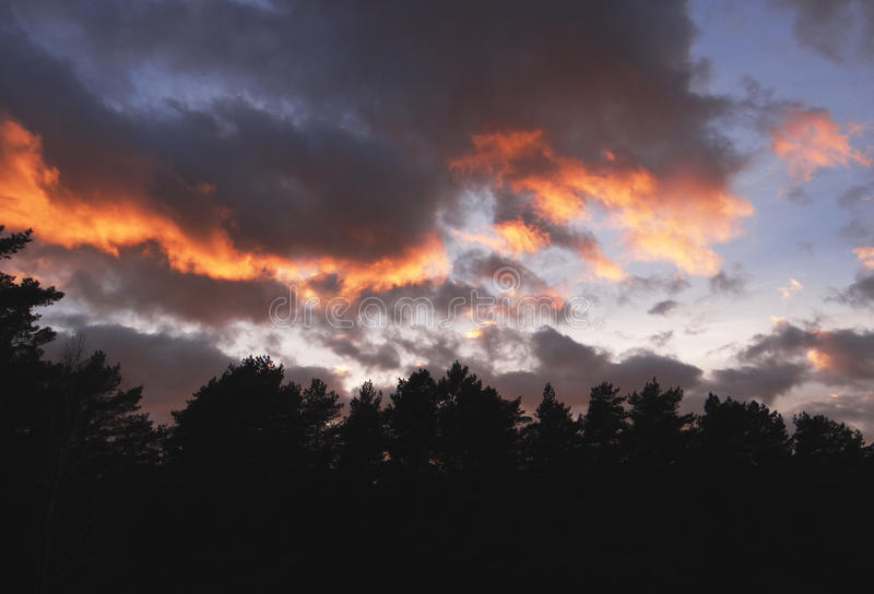 Evening sky royalty free stock photography