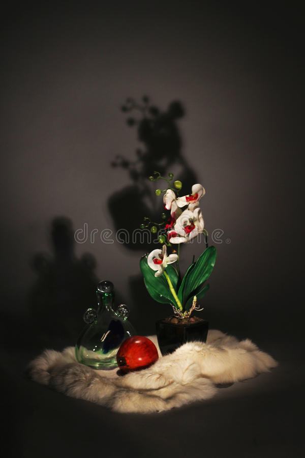 Evening still life royalty free stock images