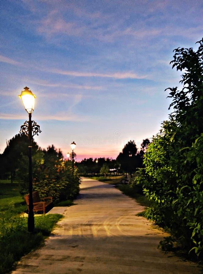 Evening street. Light lamps clouds garden, beautiful, black, denim, flowers, nails, white stock photography