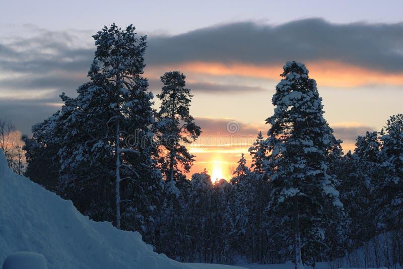 Evening sun stock photos