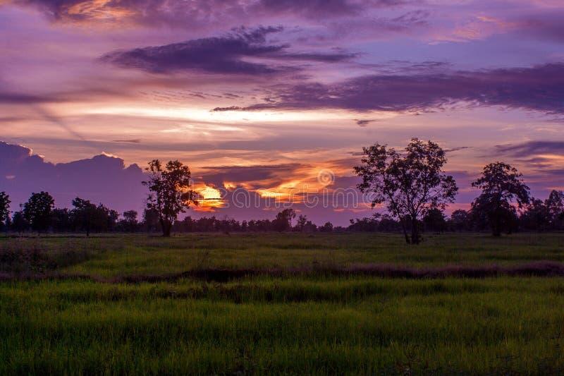 The evening sun is a beautiful horizon. Sky, sunset, summer, background, nature, sunrise, orange, landscape, sea, light, water, sunlight, view, cloud, travel stock photo
