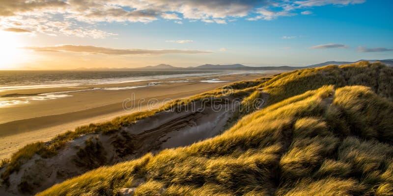 Evening sun over the sand dunes at Harlech Beach, Wales stock photos