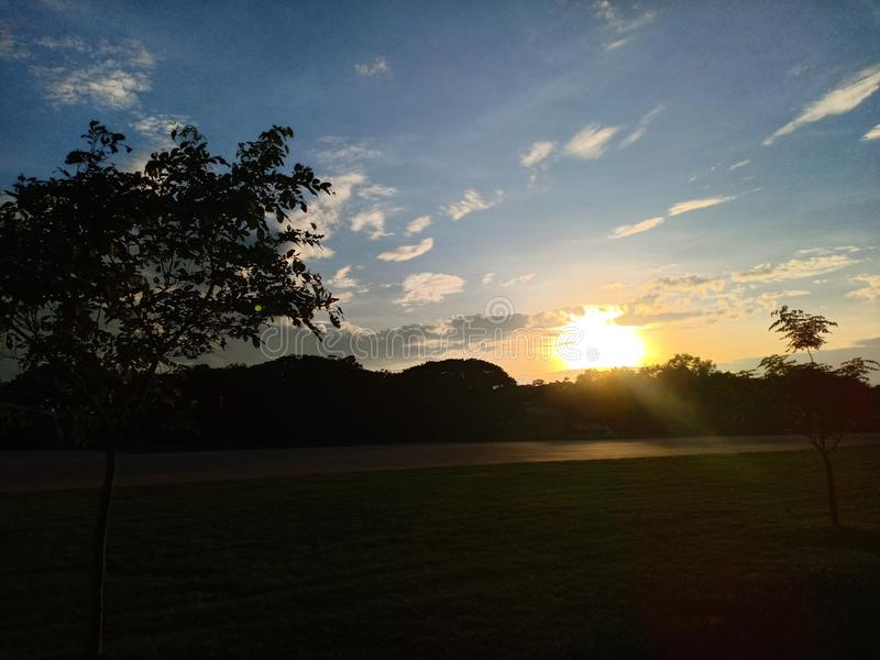 Evening time. Sky, nature, sunset, plant, tree, lawn, beautiful royalty free stock images