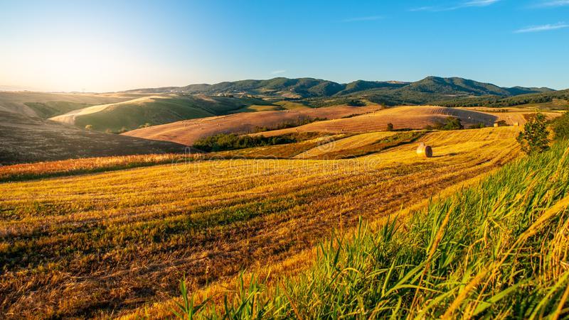 Evening in Tuscany. Hilly Tuscan landscape on sunny summer evening royalty free stock image