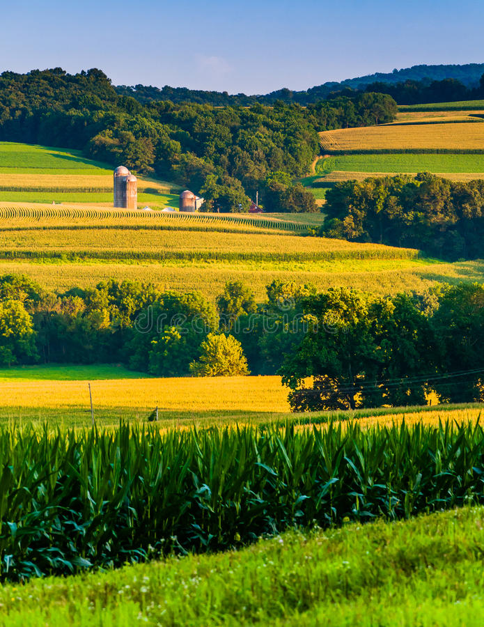 Evening view of rolling hills and farm fields in rural York County, Pennsylvania. royalty free stock photography
