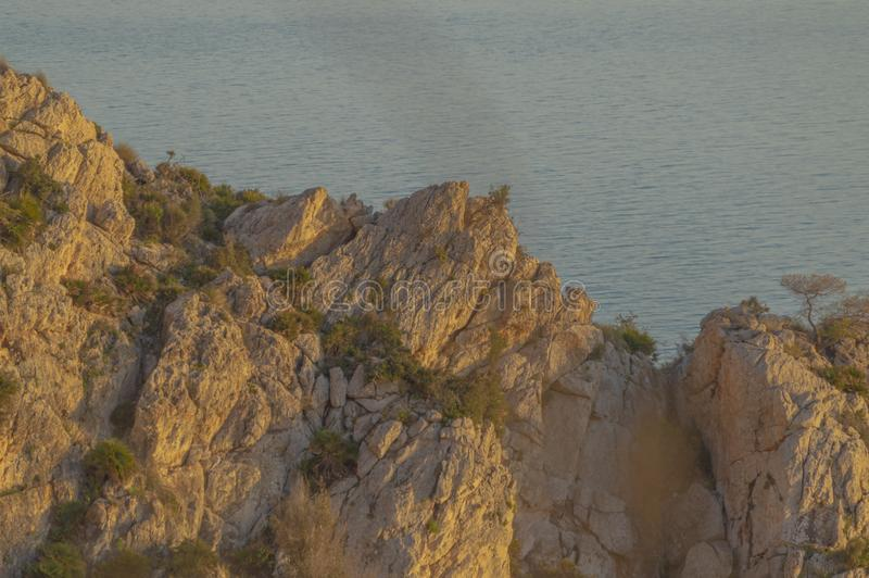 Evenings watching the sea and mountain with golden light. Oranges flowers stock image