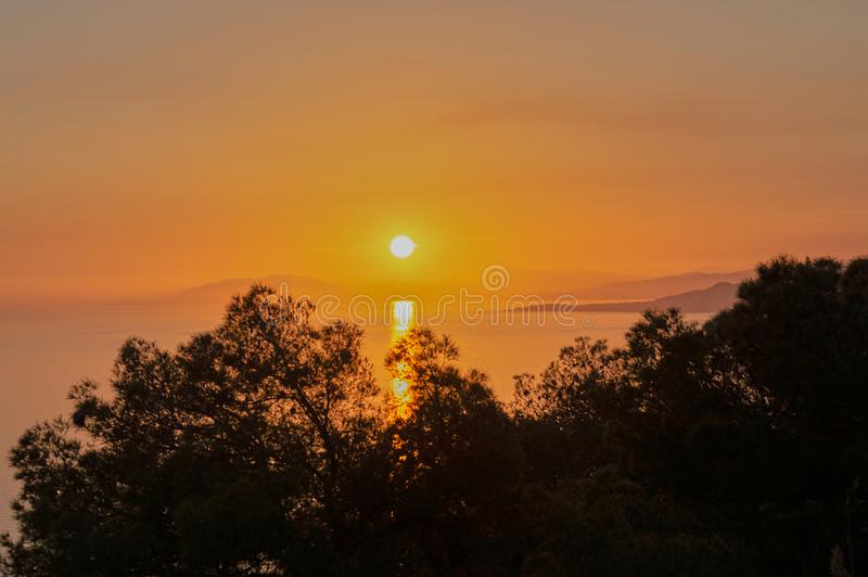 Evenings watching the sea and mountain with golden light. Oranges flowers stock images