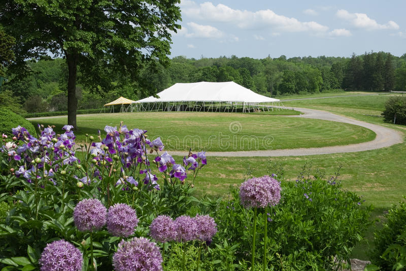 Download Event Tent stock photo. Image of tent, wedding, social - 19687392