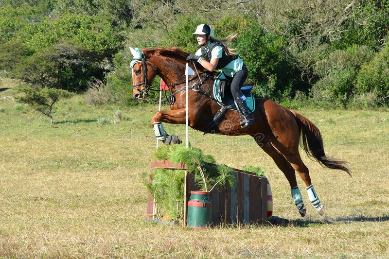 Eventers jumping cross-country course. Caucasian junior Equestrian girl and her chestnut horse jumping on their cross-country track as part of their eventing royalty free stock photo