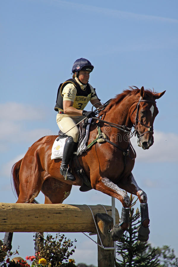 Download Eventing horse P Funnell editorial photo. Image of blenheim - 10924501