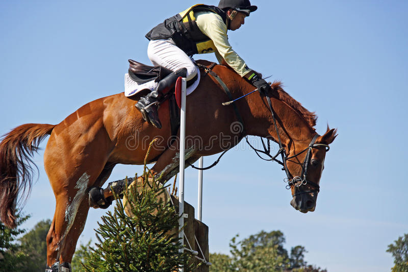 Download Eventing Possible Start Of A Rotational Fall Editorial Photography - Image: 11013682