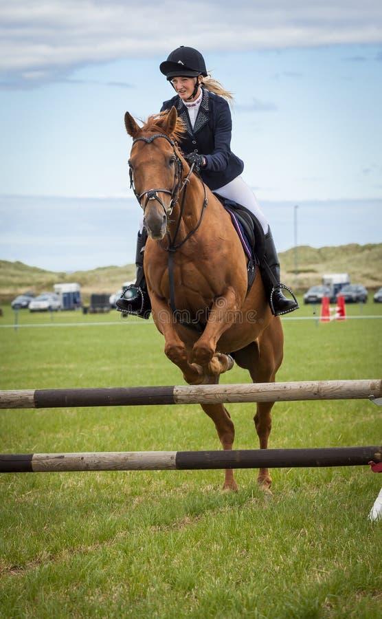 Evento de salto da mostra do cavalo gymkhana fotos de stock