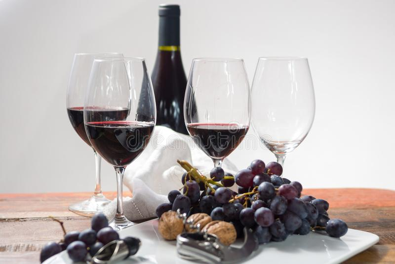 Evento professionale dell'assaggio del vino rosso con il vetro del vino di qualità fotografie stock libere da diritti