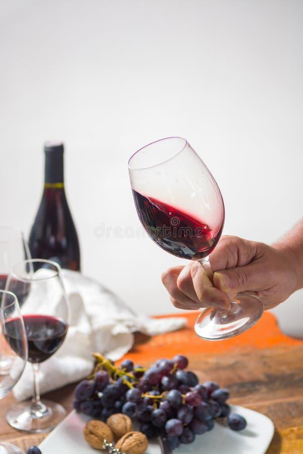 Evento professionale dell'assaggio del vino rosso con il vetro del vino di qualità fotografia stock libera da diritti