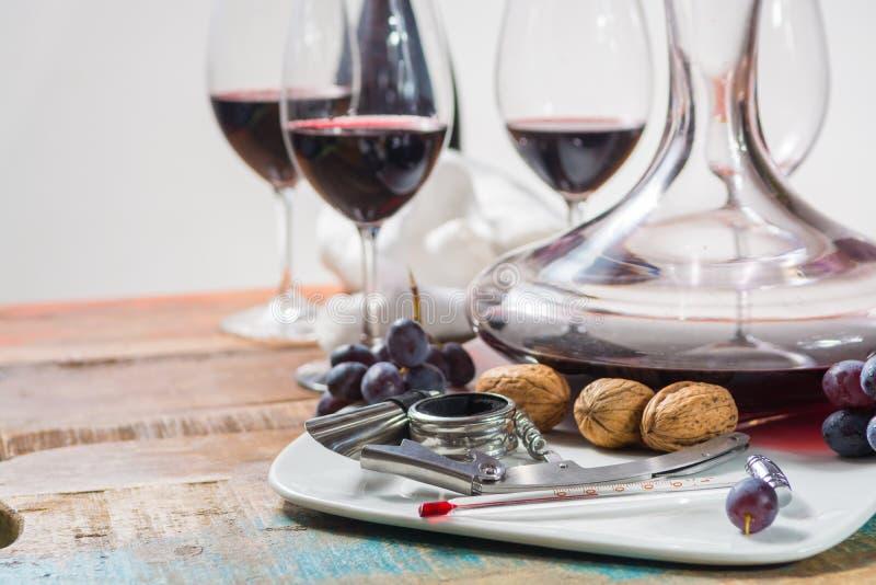 Evento professionale dell'assaggio del vino rosso con il vetro del vino di qualità fotografia stock